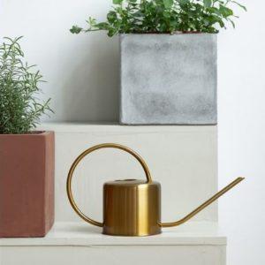 Arrosoir métal doré, un cadeau design pour alimenter vos plantes d'intérieur en eau