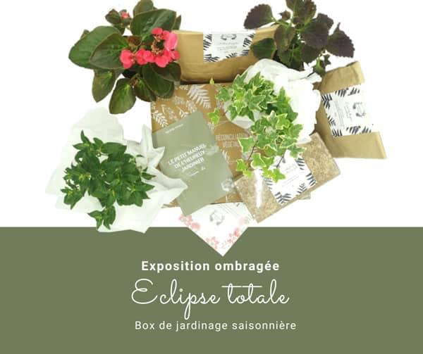 Box de jardinage saisonnière