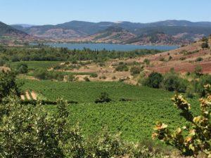 Vignobles et ruffe du Salagou, lac artificiel pour le tourisme et l'irrigation